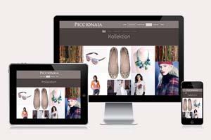 Adsolution Werbeagentur webdesign wordpress